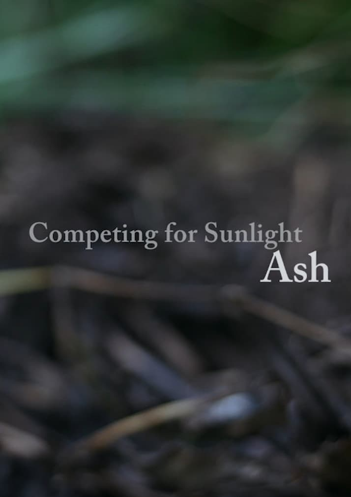 Competing for Sunlight: Ash at Vitruvian Thing